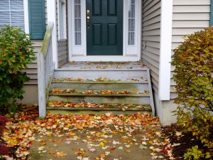 Leaves and HVAC Systems